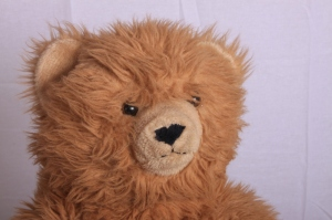 teddybeer in studio: linker softbox minder hard