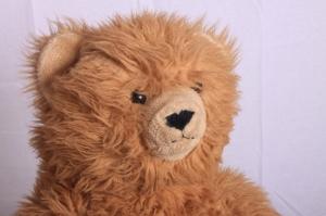 teddybeer in studio: snoot toegevoegd op rechts